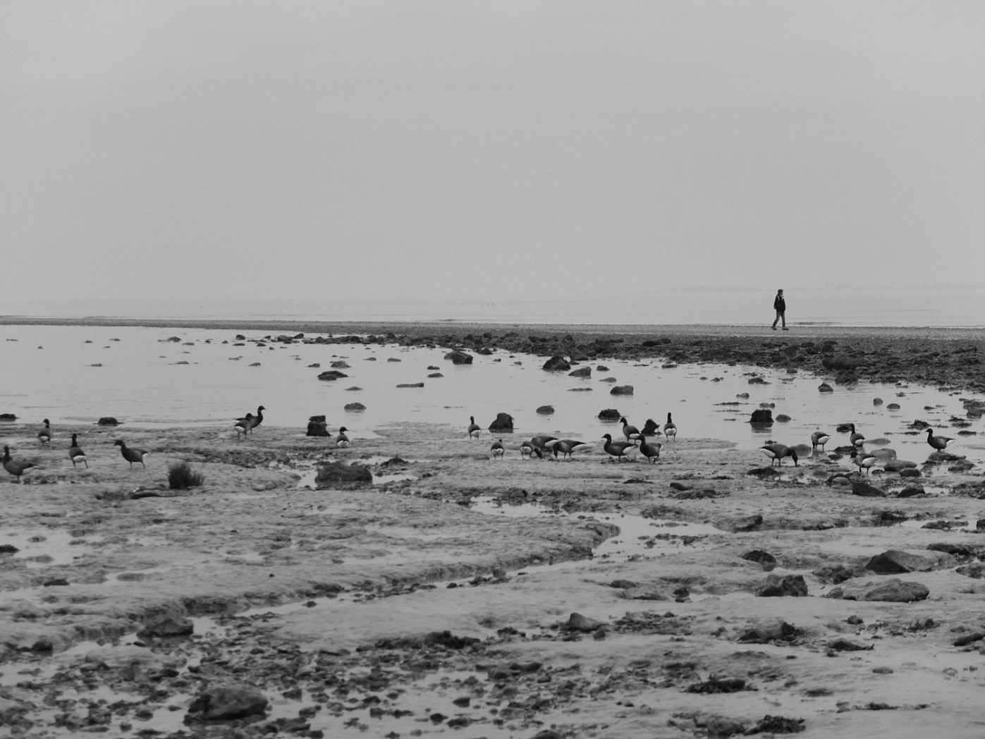 La passe aux boeufs - Port-des-Barques